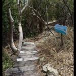 Path less-traveled