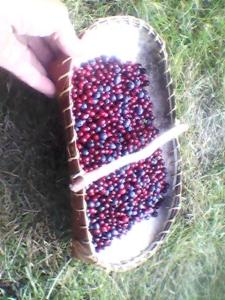 Homemade basket with berries