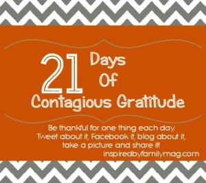 21 days of gratitude