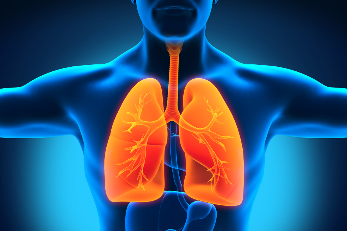 Lung Transplant Rejection - A Review