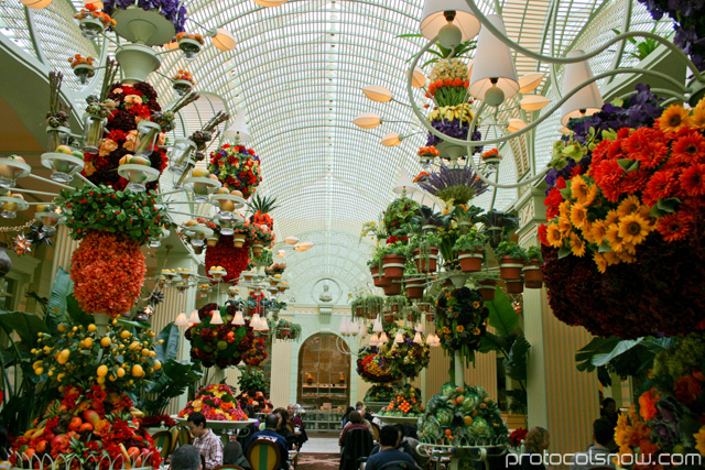 Bellagio buffet resort casino hotel Las Vegas