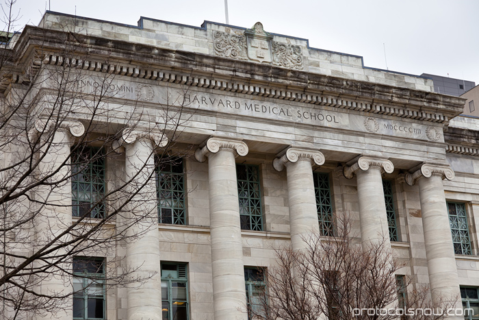 Harvard Medical School Quad Marble Buildings Part 35