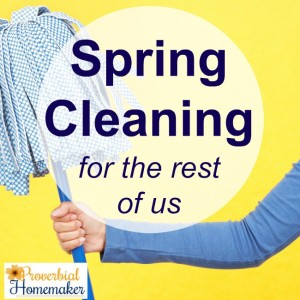Spring Cleaning for the rest of us