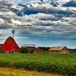 Homesteading as an Alternative Way of Life