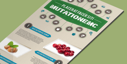 Food and Nutrition Infographic Template - Free PSD