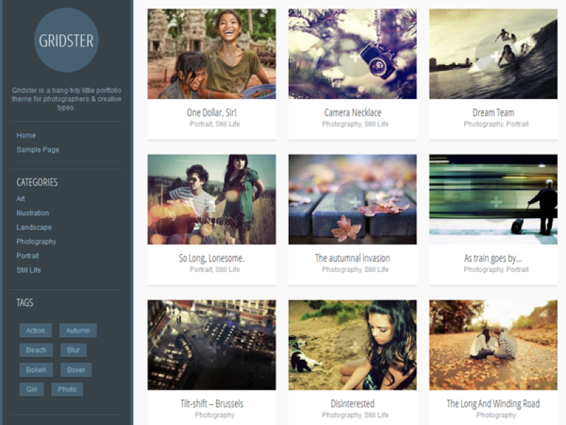 Gridster-Lite WordPress Photography Theme