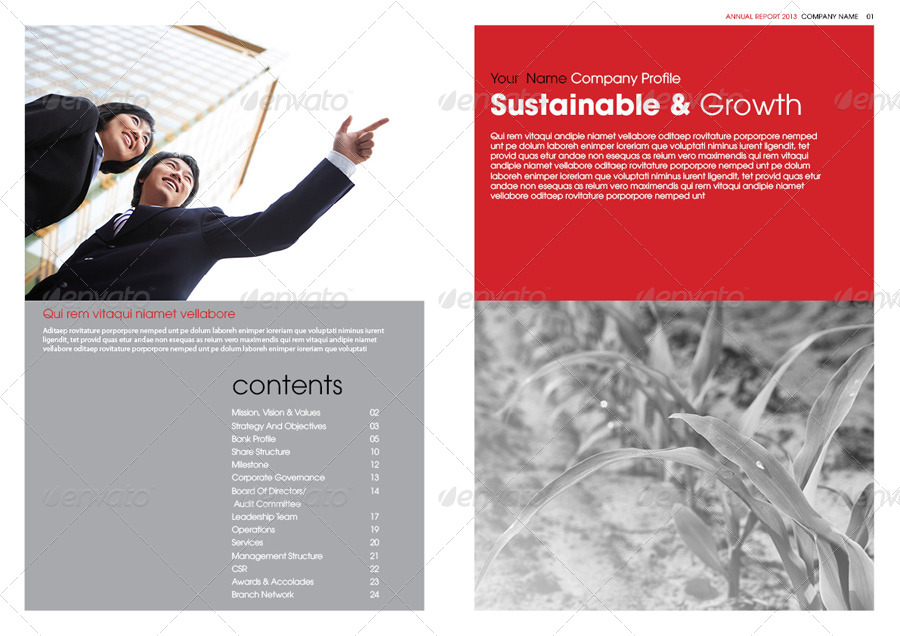 32 InDesign Annual Report Templates For Corporate Businesses