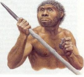 Pitecántropo erectus