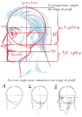 prorfil-face-tutorial