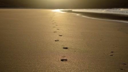 Sand Walk In