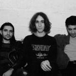 humanpet-01-blog