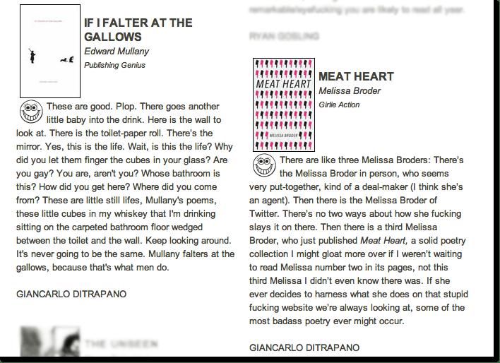 Vice Reviews copy