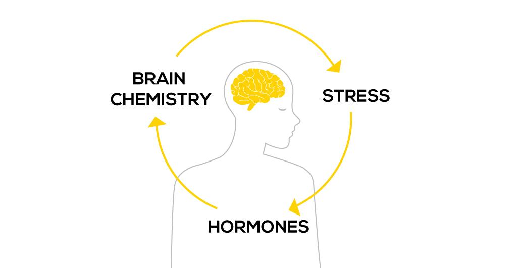 TCM-for-stress1