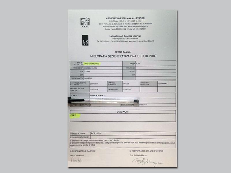 Pumi Certificato April 3