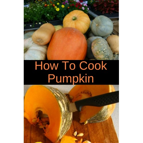Medium Crop Of How Much Pumpkin To Give A Dog