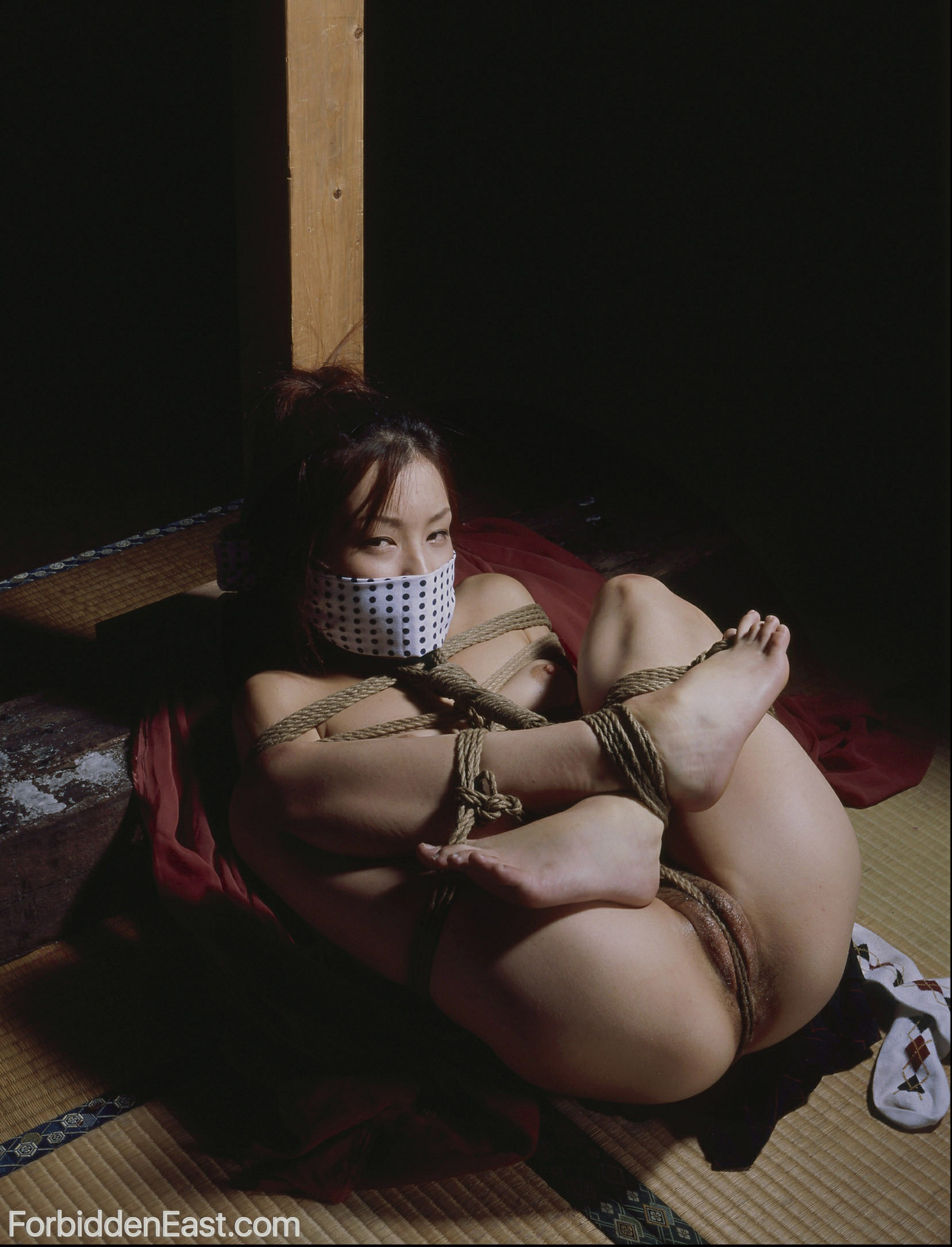 Looking bdsm bondage japanese son