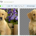 Eliminar el fondo de una imagen online con Background Burner