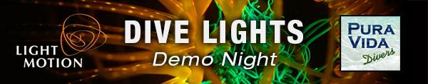 Light and Motion Lights