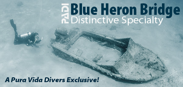 bhb-distinctive-specialty