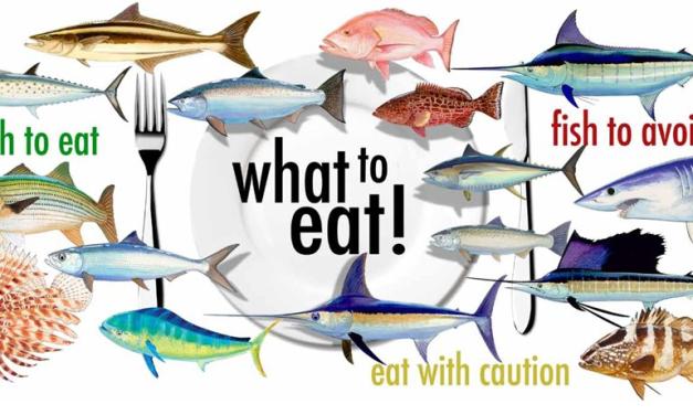 Feb 10 Social Night: Choosing Sustainable Seafood