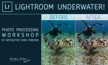 LIGHTROOM UNDERWATER – PHOTO PROCESSING WORKSHOPS