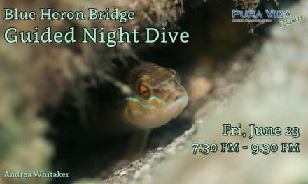 JUNE 23 NIGHT DIVE AT BLUE HERON BRIDGE