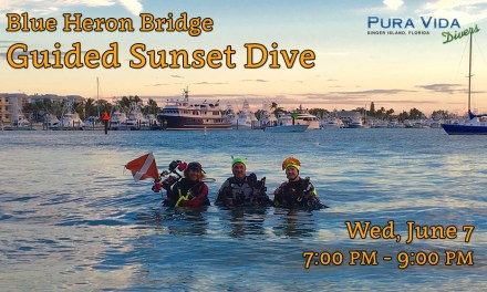 JUNE 7 SUNSET DIVE AT BLUE HERON BRIDGE