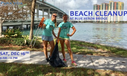 DEC 16: BLUE HERON BRIDGE CLEANUP
