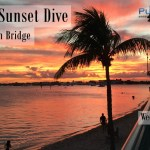 FEB 28: GUIDED SUNSET DIVE AT BLUE HERON BRIDGE