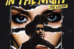 The Weeknd In The Night