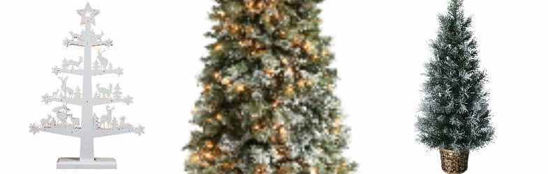 White Christmas Trees – Compare and find your perfect tree