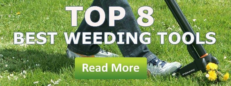 best weeding tools reviews