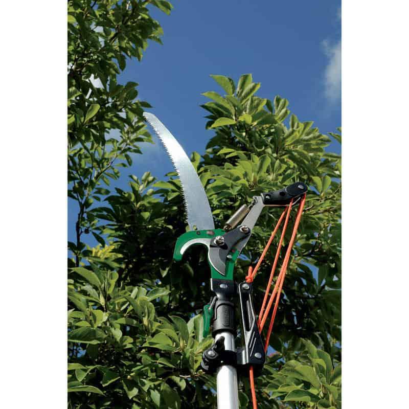draper expert tree pruner winner of our best pick