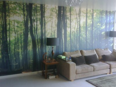 mural wallcovering 2017 - Grasscloth Wallpaper