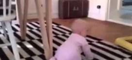 فيديو : نهايه مؤسفة لطفله رضيعه وهي تحاول ان تطارد #كلب !!