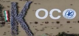 فيديو: شركة نفط الكويت تدخل موسوعة غينيس بتشكيل أكبر «حرف K بشري» بمناسبة العيد الوطني