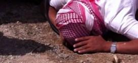 فيديو : صيد الضب في السعودية ..شاهد كيف يتم ذلك !!!
