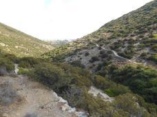 Chemin vers Profitis Ilias (Sifnos)