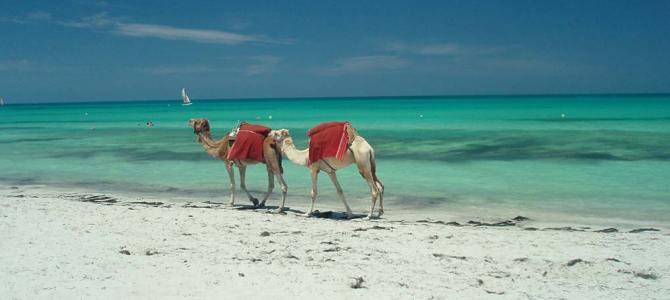 Que voir à Djerba