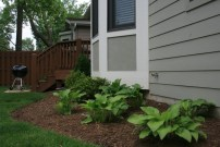 foundation landscape design st louis