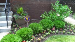 front flowerbed, landscaping design st louis