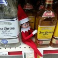 Elf on the shelf at the liquor store