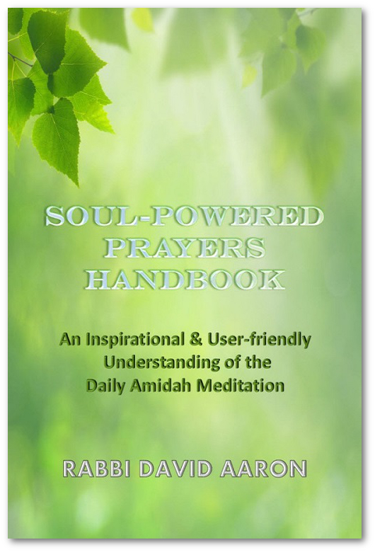 Soul-Powered-Prayers-HANDBOOK-Cover675-600x8881