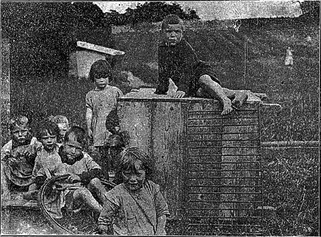 ChildrenGlenconnacht tribune