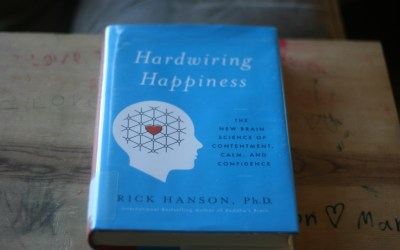 A Fantastic Book on Choosing Happiness