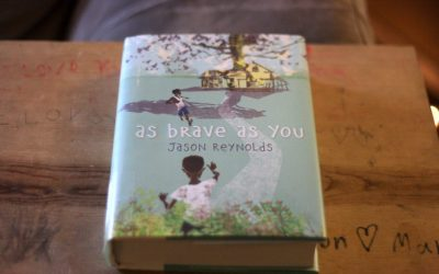 A Book About Brothers, Love, and Growing Up
