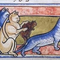 Le chat au Moyen Age, du bûcher au lolcat