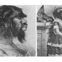 Julia Pastrana, la femme-singe du XIXème siècle