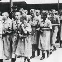 Les bordels nazis, le tabou de la Seconde Guerre mondiale
