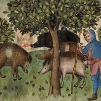 Philippe de France, le roi méconnu tué par un cochon